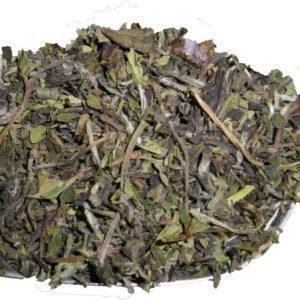 unaromatisierter grüner Tee